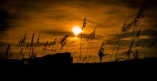 Μοίρα των βρωμών Στοκ εικόνα με δικαίωμα ελεύθερης χρήσης