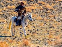 Μογγολικός χρυσός κυνηγός αετών στην παραδοσιακή συνεδρίαση ιματισμού γουνών αλεπούδων στην πλάτη αλόγου με καλά - εκπαιδευμένος  στοκ εικόνες