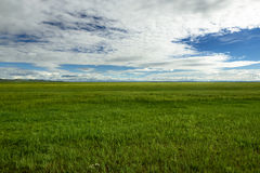 Μογγολικές στέπες, επαρχία Uvurkhangai, Μογγολία στοκ εικόνες