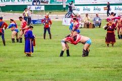Μογγολική πάλη Nadaam Στοκ Εικόνες