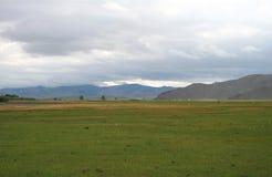 Μογγολική στέπα Στοκ φωτογραφία με δικαίωμα ελεύθερης χρήσης