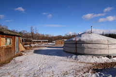 Μογγολικό yurt στο χωριό Στοκ Εικόνα