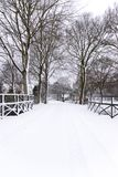 Μοιάζει με μια κάρτα αυτή η ολλανδική οδός που καλύπτεται στο χιόνι στοκ εικόνα