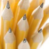 μολύβια ομάδας αιχμηρά Στοκ Εικόνες