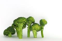 Μονά κομμάτια Brokoli στο λευκό Στοκ Εικόνες