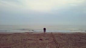 Μοναξιά Enchanted στοκ φωτογραφία