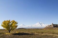 Μοναστήρι και ΑΜ Ararat Virap Khor στην Αρμενία Στοκ Εικόνα
