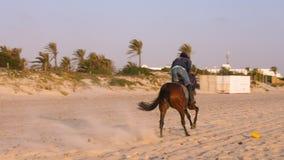 Μοναστίρ, Τυνησία - 9 Ιουνίου 2018 Αναβάτης που καλπάζει στο άλογο στην άμμο στη θερινή ημέρα Αναβάτες αλόγων που εκπαιδεύουν στη φιλμ μικρού μήκους
