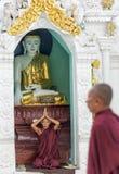 Μοναχός που προσεύχεται στα ξημερώματα παγοδών Shwedagon, Yangon, το Μιανμάρ στοκ εικόνα με δικαίωμα ελεύθερης χρήσης