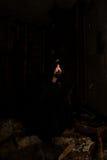 μοναχός Στοκ Φωτογραφία