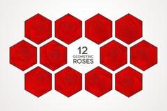 12 μοναδικά γεωμετρικά τριαντάφυλλα καθορισμένα Στοκ εικόνα με δικαίωμα ελεύθερης χρήσης