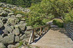 Μοναδικές πετρών πέτρες γρανίτη ποταμών μεγάλες στο δύσκολο ποταμό με την ξύλινη γέφυρα στο Vitosha εθνικό βουνό πάρκων Στοκ Εικόνες