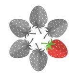 Μοναδική κόκκινη φράουλα Στοκ εικόνες με δικαίωμα ελεύθερης χρήσης