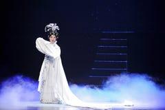 Μοναδικό μακρύ μανίκι-Jiangxi OperaBlue παλτό techniqueï ¼ šThe Στοκ εικόνα με δικαίωμα ελεύθερης χρήσης