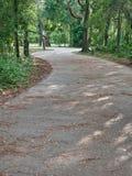 Μονοπάτι για το περπάτημα γύρω από τη λίμνη στο πάρκο στοκ φωτογραφία με δικαίωμα ελεύθερης χρήσης