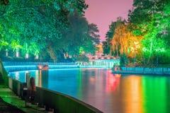 μονοπάτι και πράσινα δέντρα τη νύχτα Στοκ Εικόνα