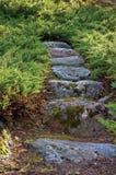 Μονοπάτι κλιμακοστάσιων βράχου διαβάσεων πετρών γρανίτη ιουνιπέρων Στοκ εικόνα με δικαίωμα ελεύθερης χρήσης