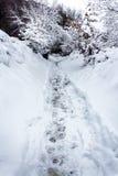 Μονοπάτι μέσω του χιονιού Στοκ Εικόνες