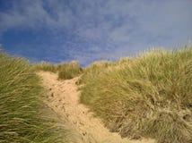 Μονοπάτι μέσω των αμμόλοφων άμμου στοκ εικόνες με δικαίωμα ελεύθερης χρήσης