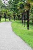 μονοπάτι πάρκων ασφάλτου Στοκ Εικόνες