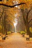 μονοπάτι πάρκων πάγκων στοκ φωτογραφία