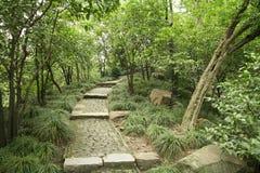 μονοπάτι πάρκων που στρώνετ στοκ φωτογραφία