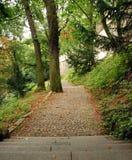 μονοπάτι πάρκων Στοκ Εικόνες