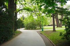 μονοπάτι πάρκων στοκ φωτογραφίες