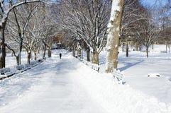 μονοπάτι πάρκων στοκ φωτογραφία με δικαίωμα ελεύθερης χρήσης