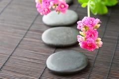 Μονοπάτι πετρών με τα λουλούδια για zen spa την ανασκόπηση. Οριζόντιος Στοκ Εικόνα