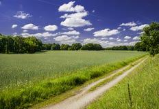 μονοπάτι πεδίων Στοκ φωτογραφία με δικαίωμα ελεύθερης χρήσης