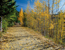 Μονοπάτι στο βουνό Στοκ εικόνα με δικαίωμα ελεύθερης χρήσης
