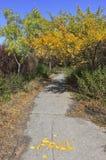 Μονοπάτι στο πάρκο φθινοπώρου με την επιγραφή πτώσης στοκ εικόνες με δικαίωμα ελεύθερης χρήσης