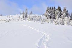 Μονοπάτι στο χιόνι Στοκ φωτογραφίες με δικαίωμα ελεύθερης χρήσης
