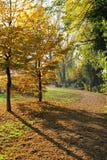 Μονοπάτι το φθινόπωρο Στοκ φωτογραφίες με δικαίωμα ελεύθερης χρήσης