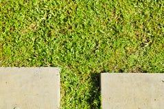 Μονοπάτι τσιμέντου στην πράσινη χλόη Στοκ Εικόνες