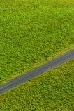 μονοπάτι χλόης Στοκ εικόνες με δικαίωμα ελεύθερης χρήσης