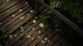 μονοπάτι zen Στοκ Φωτογραφία