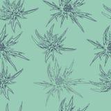 Μονοχρωματική άνευ ραφής άνθιση, floral σχέδιο Ελεύθερη απεικόνιση δικαιώματος