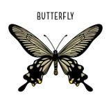 Μονοχρωματική μαύρη πεταλούδα Γραφικό εικονίδιο της πεταλούδας διανυσματική απεικόνιση
