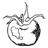 Μονοχρωματικός λίγο στρογγυλό κερασιών διάνυσμα τέχνης γραμμών ντοματών φυτικό σκιαγραφημένο Στοκ φωτογραφίες με δικαίωμα ελεύθερης χρήσης