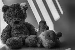 Μονοχρωματικός αντέξτε και συνεδρίαση παιχνιδιών αρνιών από το παράθυρο στις σκιές Στοκ Εικόνες