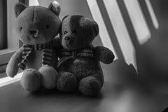 Μονοχρωματικός αντέξτε και συνεδρίαση παιχνιδιών γατακιών από το παράθυρο στις σκιές Στοκ Φωτογραφίες