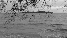 Μονοχρωματικός η θάλασσα στοκ φωτογραφία