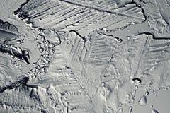 Μονοχρωματικός πάγος σύστασης στοκ εικόνα με δικαίωμα ελεύθερης χρήσης