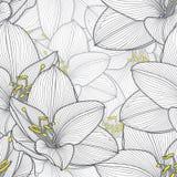 Μονοχρωματικό άνευ ραφής floral υπόβαθρο χέρι-σχεδίων με τα amaryllis λουλουδιών Στοκ Εικόνες