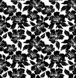 Μονοχρωματικό άσπρο υπόβαθρο με τα μαύρα λουλούδια Διανυσματική απεικόνιση