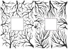 Μονοχρωματικό γραπτό υπόβαθρο με τους κλάδους δέντρων Στοκ εικόνα με δικαίωμα ελεύθερης χρήσης