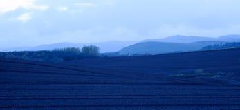 Μονοχρωματικό μπλε τοπίο Στοκ εικόνες με δικαίωμα ελεύθερης χρήσης