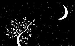 Μονοχρωματικό υπόβαθρο με το δέντρο Στοκ Εικόνες